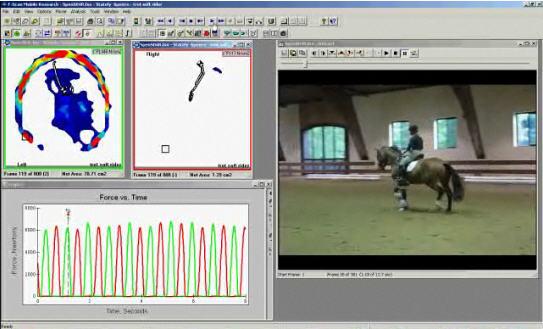logiciel Tekscan Hoof™